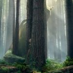 Watch Online Pete's Dragon 2016 Movie