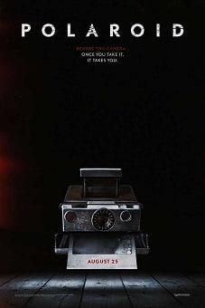 Polaroid 2019